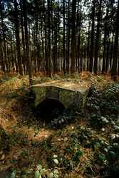 Polygon Wood -Ypres